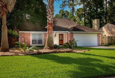 19 Sheep Meadow Place The Woodlands TX 77381