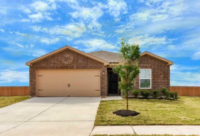 1119 Diamond Drape Drive Iowa Colony TX 77583