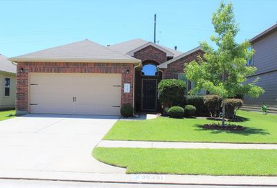 25431 Dappled Filly Drive Tomball TX 77375