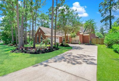 15 Shiny Pebble Place The Woodlands TX 77381