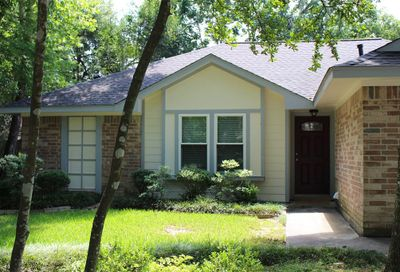 52 Country Forest Court The Woodlands TX 77380