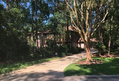 46 Indian Clover Drive The Woodlands TX 77381