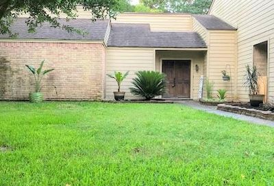 14 Cokeberry Street The Woodlands TX 77380
