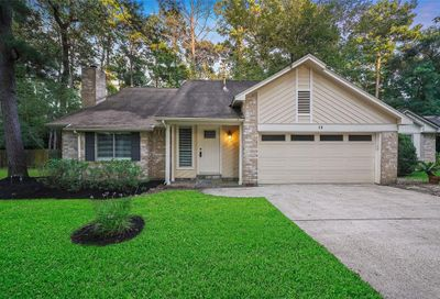 12 Edgewood Forest Court The Woodlands TX 77381