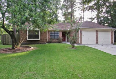 18 Raindream Place The Woodlands TX 77381