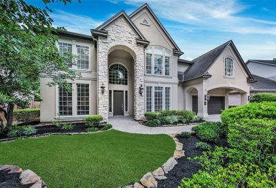 22 Orchard Pines Place The Woodlands TX 77382