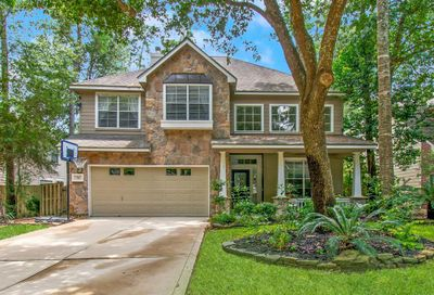 34 Wildflower Trace Place The Woodlands TX 77382