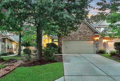46 Wintergreen Trail The Woodlands TX 77382