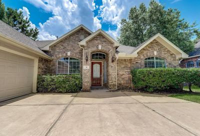 30 Emery Mill Place The Woodlands TX 77384