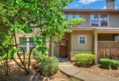 62 Woodlily Place Spring TX 77382