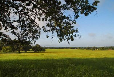 Tbd W Farm To Market 227 Grapeland TX 75844