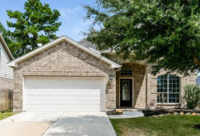 19502 Country Mountain Court Spring TX 77388
