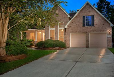 31 Matisse Meadow The Woodlands TX 77382