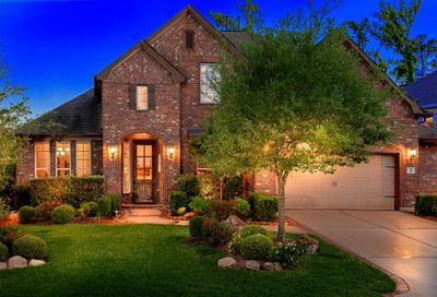 31 Langstone Place The Woodlands TX 77389