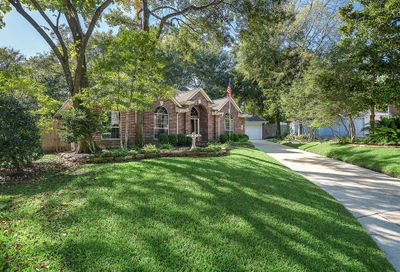 35 Vista Mill Place The Woodlands TX 77382