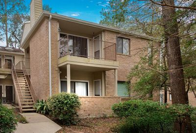3500 Tangle Brush Drive The Woodlands TX 77381