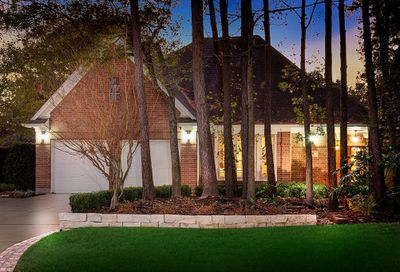 39 Berryview Court The Woodlands TX 77380