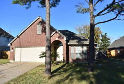 1807 Branch Hill Drive Pearland TX 77581