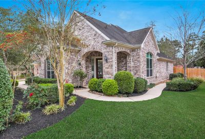 11 Graylin Woods Place The Woodlands TX 77382
