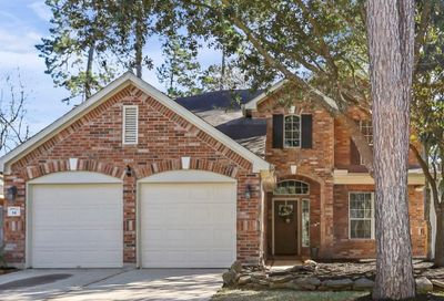 14 S Misty Canyon Place The Woodlands TX 77385