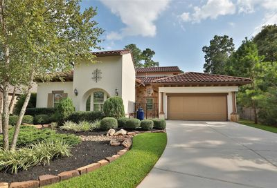 131 W Cresta Bend Place The Woodlands TX 77389