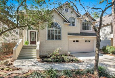 27 Dalea Place The Woodlands TX 77382