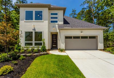 15 Clearview Terrace Place The Woodlands TX 77375