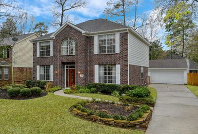 15 Firethorn Place The Woodlands TX 77382