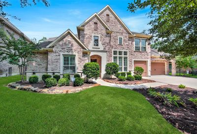 14 Shanewood Court The Woodlands TX 77382