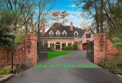 23 Coldsprings Court The Woodlands TX 77380