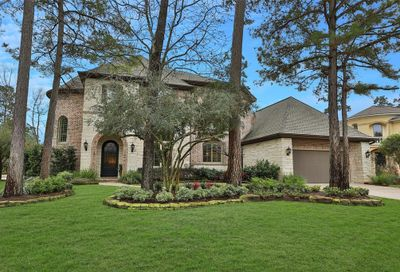 14 Spruce Canyon Place The Woodlands TX 77382