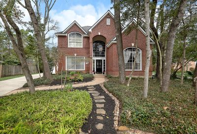 102 Windsong Court The Woodlands TX 77381