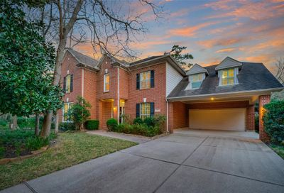 15 N Goldenvine Circle The Woodlands TX 77382