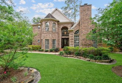 22 Hornsilver Place The Woodlands TX 77381