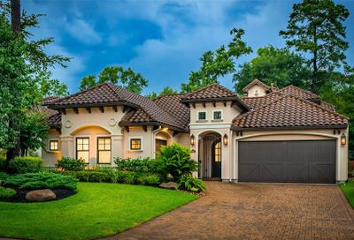 22 Moatwood Court The Woodlands TX 77382