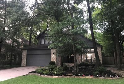 50 N Wilde Yaupon The Woodlands TX 77381