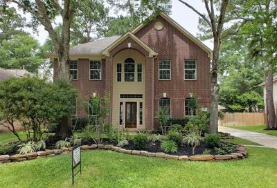 19 Canoe Birch Place The Woodlands TX 77382