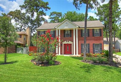 10 Firewillow Place The Woodlands TX 77381
