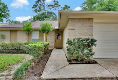 47 Country Forest Court The Woodlands TX 77380