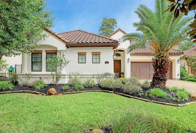 10 Moatwood Court The Woodlands TX 77382