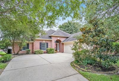 15 Eagle Rise Place The Woodlands TX 77382