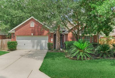 30 Davis Cottage Court The Woodlands TX 77385