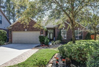 7 Caelin Court The Woodlands TX 77382