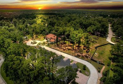 21 Honey Daffodil Place The Woodlands TX 77380
