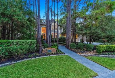 19 Wooded Brook Drive The Woodlands TX 77382