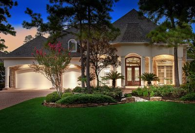 6 Harmony Links Place The Woodlands TX 77382