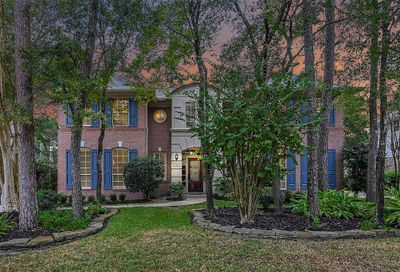 15 Bank Birch Place The Woodlands TX 77381