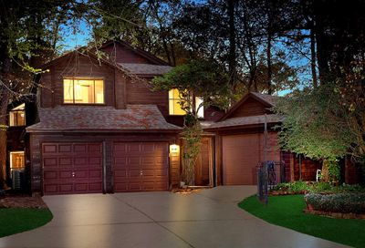 36 Gannet Hollow Place The Woodlands TX 77381