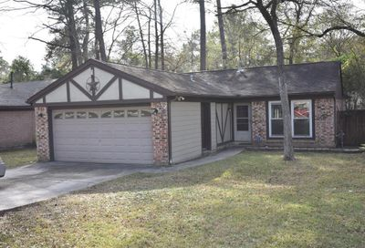 4 Redberry Court The Woodlands TX 77381