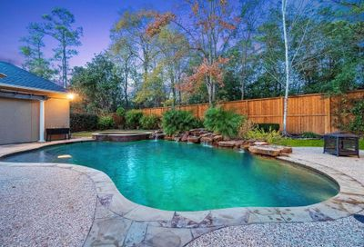 10 Edgecliff Place The Woodlands TX 77382